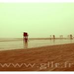 Gilt Paysages Mer N°: M02