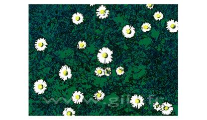 Marguerites Gilt Fleurs et Plantes N°: FP04