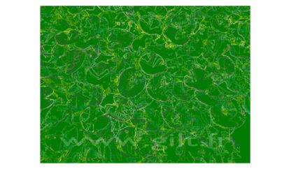 Nénuphars - Filet clair sur fond vert Gilt Fleurs et Plantes N°: FP02