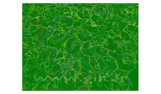 Fond Vert Clair nénuphars - filet clair sur fond vert - signée par l'artiste gilt - art
