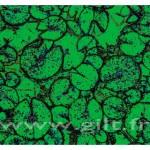 Nénuphars - Filet noir sur fond vert Gilt Fleurs et Plantes N°: FP06