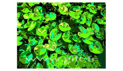 Nénuphars - Vert et jaune sur Fond vert foncé Gilt Fleurs et Plantes N°: FP03
