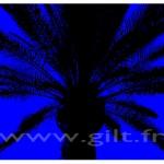 Sérigraphies Gilt Fleurs et Plantes N°: FP08