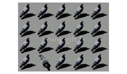 Les Pigeons Gilt Animaux N°: AN01