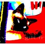Siamois et coussins Gilt Animaux N°: AN03