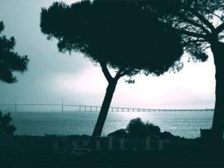 Pins et Pont de Saint-Nazaire - Gilt réf.: M20 - Thème Mer - Estampe