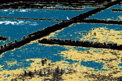 Oiseau et Marais salants - Algues beiges - Gilt réf.: M29 - Thème Mer - Estampe
