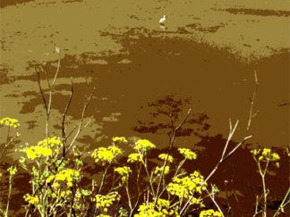 Fleurs - Oiseau et Marais salants - Gilt réf.: M31 - Thème Mer - Estampe