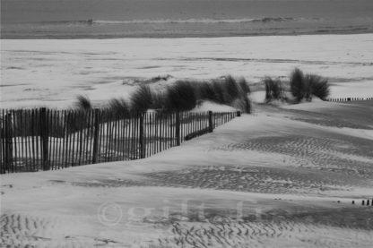 Ganivelle sur Plage enneigée - Gilt réf.: M50 - Thème Mer - Estampe