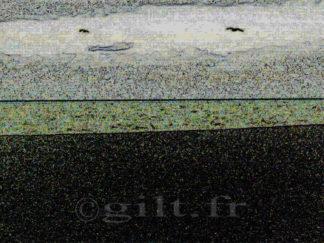 Mer et Brouillard - Gilt réf.: M51 - Thème Mer - Estampe