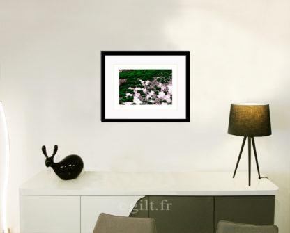 Décoration d'intérieur - séjour - meuble, lampe et sculpture avec Estampe d'Art Gilt - Arbres et Mousses AM14