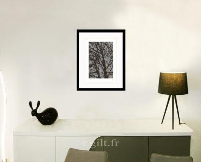 Décoration d'intérieur - séjour - meuble, lampe et sculpture avec Estampe d'Art Gilt - Arbres et Mousses AM24