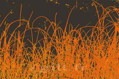 Herbes sèches couleur feu - Fond marron Gilt réf.: AM16 - Thème Arbres et Mousses - Estampe