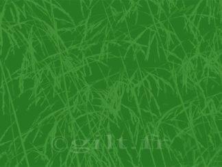 Empreintes Herbes - fond vert Gilt réf.: AM27 - Thème Arbres et Mousses - Estampe